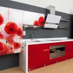 Red Weed kitchen furniture